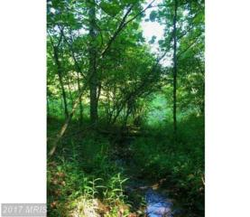 Annadale Drive, Gerrardstown, WV 25420 (#BE9945426) :: Pearson Smith Realty
