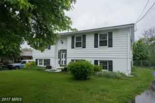 319 Orchard Estates Avenue, Martinsburg, WV 25401 (#BE9945678) :: Pearson Smith Realty