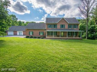 1862 Goldmiller, Bunker Hill, WV 25413 (#BE9946135) :: Pearson Smith Realty
