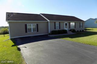 72 Snail Kite Road, Martinsburg, WV 25405 (#BE9948111) :: Pearson Smith Realty