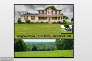 85 Fraction Lane, Bunker Hill, WV 25413 (#BE9948678) :: Pearson Smith Realty