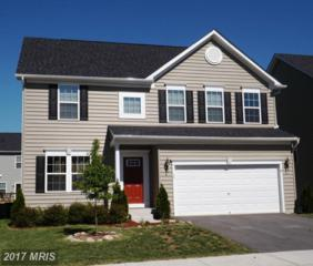 29 Tollerton Trail, Falling Waters, WV 25419 (#BE9948708) :: Pearson Smith Realty