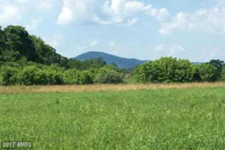 LOT 141 Anacostia Lane, Hedgesville, WV 25427 (#BE9949638) :: Pearson Smith Realty