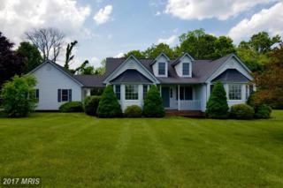 3 Digit Lane, Bunker Hill, WV 25413 (#BE9950020) :: Pearson Smith Realty