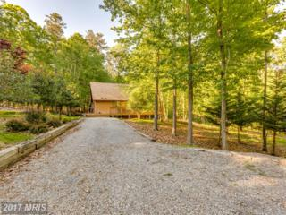 45 Chippewa Trail, Hedgesville, WV 25427 (#BE9950264) :: Pearson Smith Realty