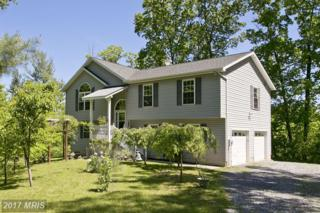 2916 Buck Hill Road, Gerrardstown, WV 25420 (#BE9951434) :: Pearson Smith Realty