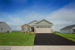 2 Liverpool Lane, Martinsburg, WV 25405 (#BE9953892) :: Pearson Smith Realty