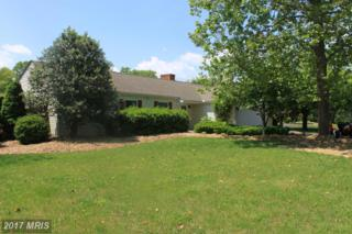 222 Hawick Road, Inwood, WV 25428 (#BE9954507) :: Pearson Smith Realty