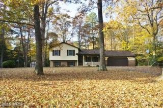 282 Cove Drive, Lusby, MD 20657 (#CA9812057) :: Pearson Smith Realty