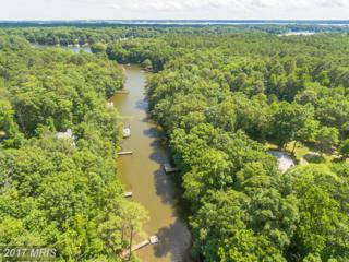 173 Brooks Cove Drive, Lusby, MD 20657 (#CA9862900) :: Pearson Smith Realty