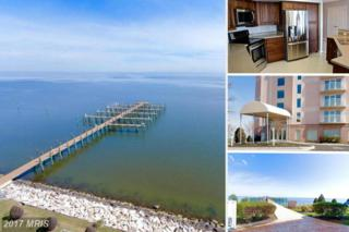 8501 Bayside Road Ph4, Chesapeake Beach, MD 20732 (#CA9869769) :: Pearson Smith Realty