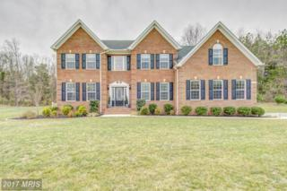 2006 Timberneck Drive, Owings, MD 20736 (#CA9891761) :: LoCoMusings
