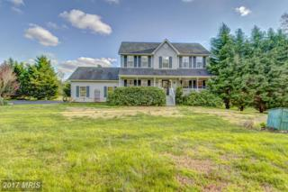 3130 Mills Pond Drive, Port Republic, MD 20676 (#CA9923179) :: Pearson Smith Realty