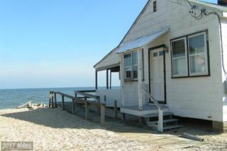 6534 Long Beach Drive, St Leonard, MD 20685 (#CA9939793) :: Pearson Smith Realty