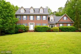 2821 Lady Annes Way, Huntingtown, MD 20639 (#CA9948022) :: Pearson Smith Realty