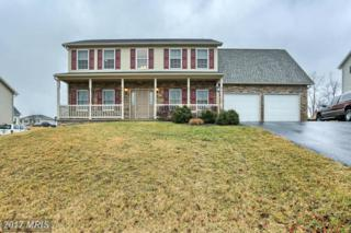 16 Feather Drive, Shippensburg, PA 17257 (#CB9849120) :: Pearson Smith Realty