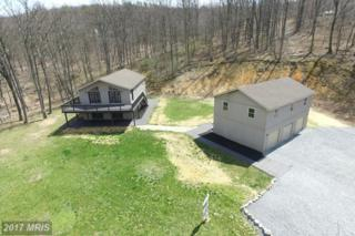 317 High Mountain Road, Shippensburg, PA 17257 (#CB9929824) :: Pearson Smith Realty