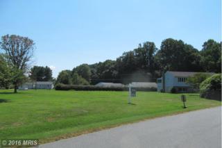 Yellowfield Boulevard, Elkton, MD 21921 (#CC9730842) :: Pearson Smith Realty