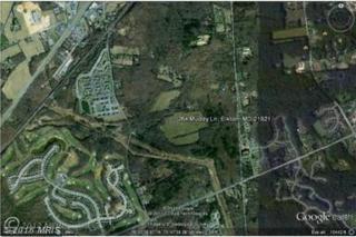 264 Muddy Lane, Elkton, MD 21921 (#CC9745610) :: Pearson Smith Realty