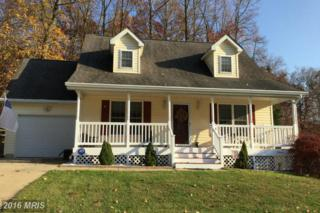 106 Continental Drive, Elkton, MD 21921 (#CC9814231) :: Pearson Smith Realty