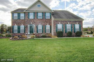4 Gina Marie Lane, Elkton, MD 21921 (#CC9833299) :: Pearson Smith Realty