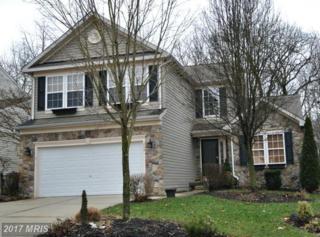 269 Thomas Jefferson Terrace, Elkton, MD 21921 (#CC9844433) :: Pearson Smith Realty