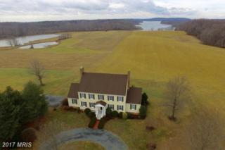 239 Oriole Farm Lane, Earleville, MD 21919 (#CC9845795) :: Pearson Smith Realty