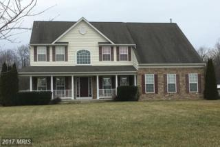 10 Gina Marie Lane, Elkton, MD 21921 (#CC9852869) :: Pearson Smith Realty
