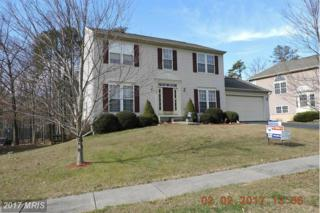 167 Whitaker Avenue, North East, MD 21901 (#CC9853319) :: Pearson Smith Realty