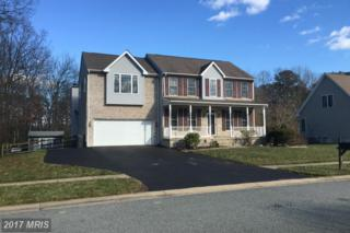 27 Watson Way, North East, MD 21901 (#CC9858170) :: Pearson Smith Realty