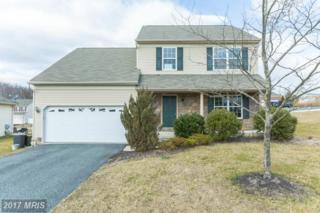 19 Bay View Woods Loop, North East, MD 21901 (#CC9865414) :: Pearson Smith Realty