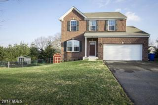10 Van Weaver Drive, North East, MD 21901 (#CC9868695) :: Pearson Smith Realty