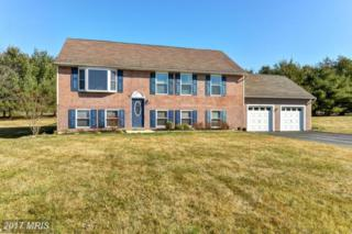 45 Towers Lane, Rising Sun, MD 21911 (#CC9869105) :: Pearson Smith Realty