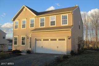 217 Magnolia Drive, Elkton, MD 21921 (#CC9887530) :: LoCoMusings
