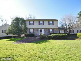 2616 Telegraph Road, North East, MD 21901 (#CC9888778) :: Pearson Smith Realty