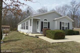 38 Cinnamon Drive, Conowingo, MD 21918 (#CC9896580) :: Pearson Smith Realty