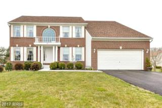 17 Brookview Loop, Elkton, MD 21921 (#CC9903827) :: Pearson Smith Realty