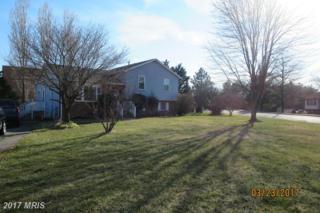 138 Hearthstone Drive, Elkton, MD 21921 (#CC9904778) :: Pearson Smith Realty