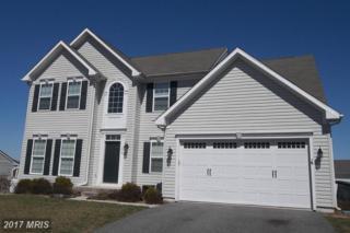 213 Magnolia Drive, Elkton, MD 21921 (#CC9904785) :: Pearson Smith Realty