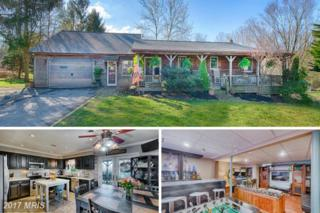 712 Wheatley Road, North East, MD 21901 (#CC9905674) :: Pearson Smith Realty