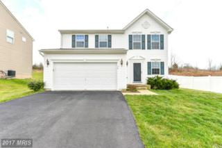 14 Bay View Woods Loop, North East, MD 21901 (#CC9907312) :: Pearson Smith Realty