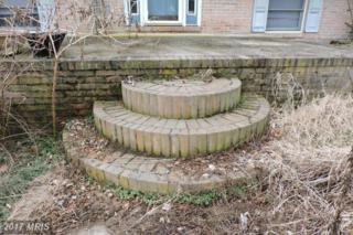 299 Rowlandsville Road, Conowingo, MD 21918 (#CC9907714) :: Pearson Smith Realty