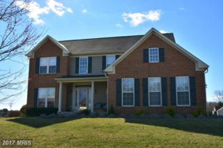 296 Manor Circle, Elkton, MD 21921 (#CC9909184) :: Pearson Smith Realty