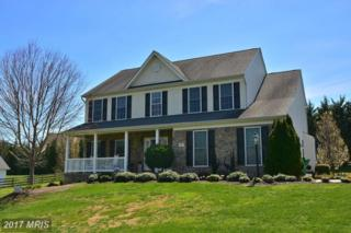99 Mccormick Drive, Port Deposit, MD 21904 (#CC9912276) :: Pearson Smith Realty
