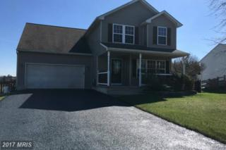 202 Turtleback Court, Rising Sun, MD 21911 (#CC9913158) :: Pearson Smith Realty