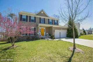 141 Thomas Jefferson Terrace, Elkton, MD 21921 (#CC9917780) :: Pearson Smith Realty