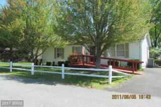 251 Water Street, Cecilton, MD 21913 (#CC9919746) :: Pearson Smith Realty