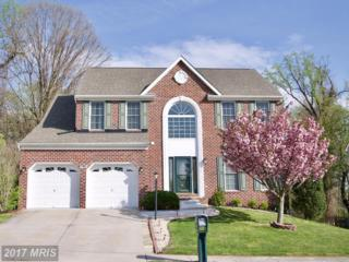 716 Concord Point Drive, Perryville, MD 21903 (#CC9926791) :: Pearson Smith Realty