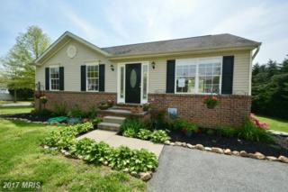 12 Chesapeake Landing Drive, Perryville, MD 21903 (#CC9929090) :: Pearson Smith Realty