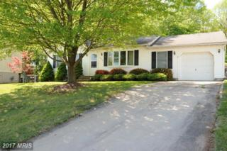 422 Gray Mount Circle, Elkton, MD 21921 (#CC9931564) :: Dart Homes